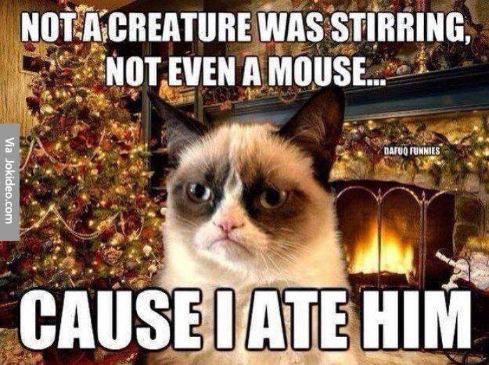 b4f003f0dd2edaa04e3e7c6a2505c866-funny-christmas-memes-christmas
